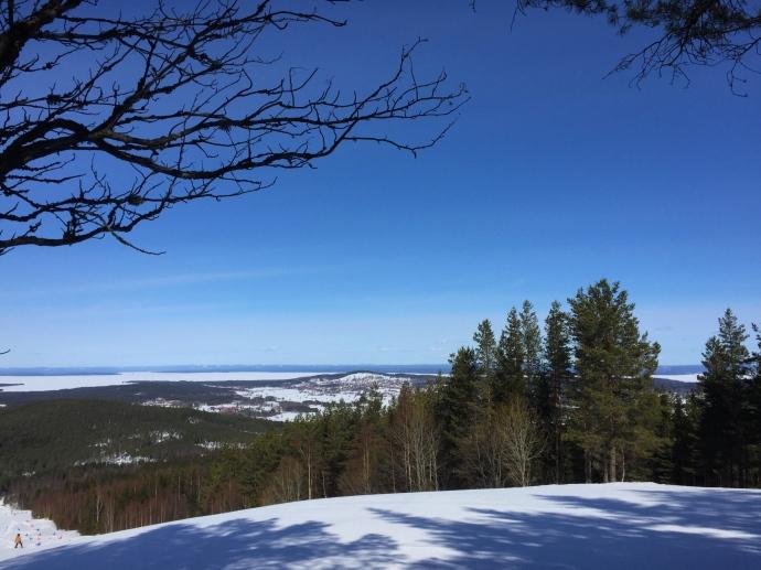 Granberget med utsikt över Siljan.