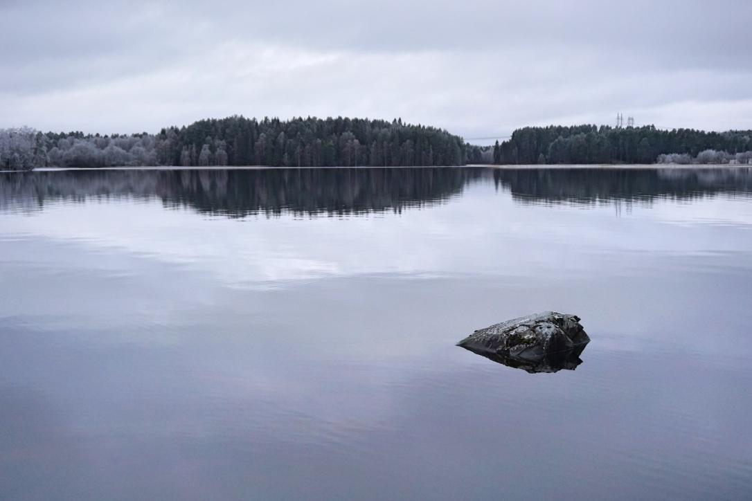 Skogarna i Sollefteå